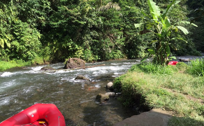 Rafting di Bali, Kegiatan yang Membuat Banyak Orang Tertarik Mencoba